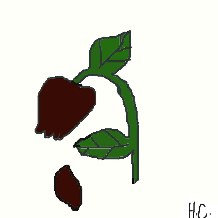 Dead Rose Clipart.
