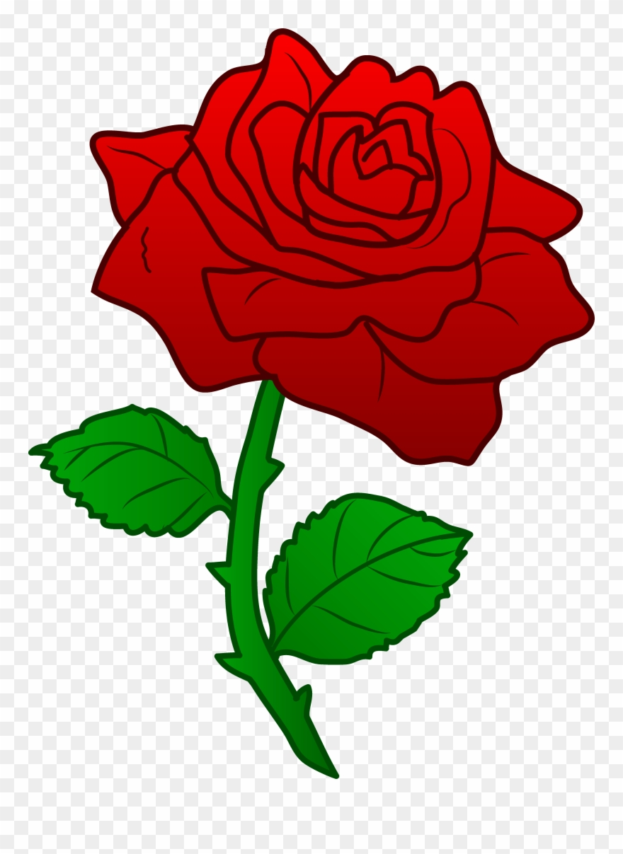 Clip Art Roses With Thorns And Dead Vines.