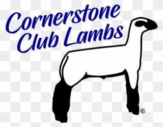 Free PNG Lamb Clip Art Download.