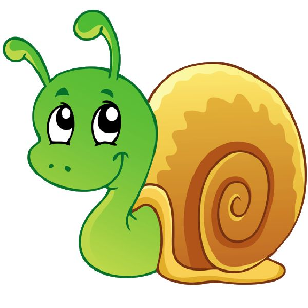 Cartoon animal clipart snail.