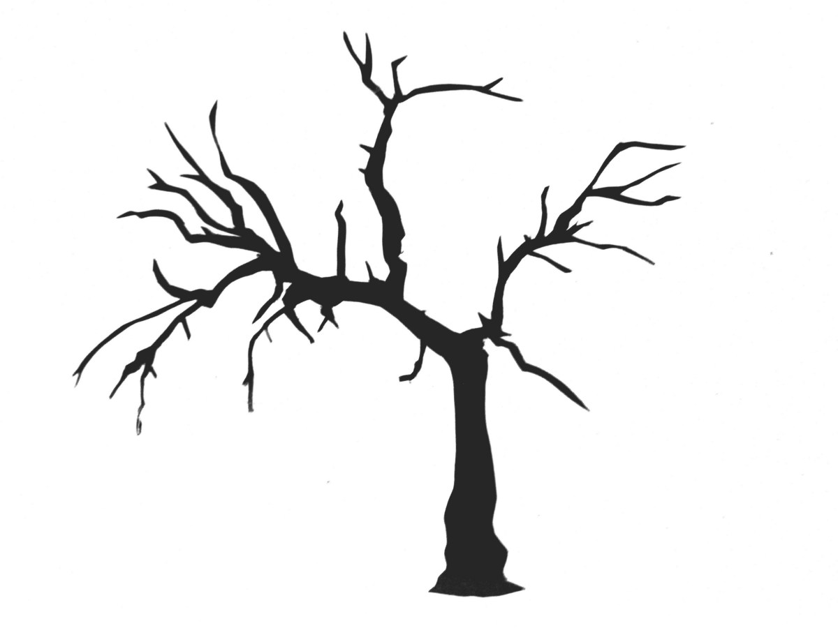 tree with no leaves clipart #6