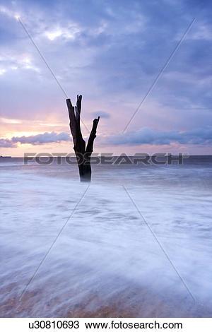 Stock Photo of England, Suffolk, Benacre, The tide rushing in.