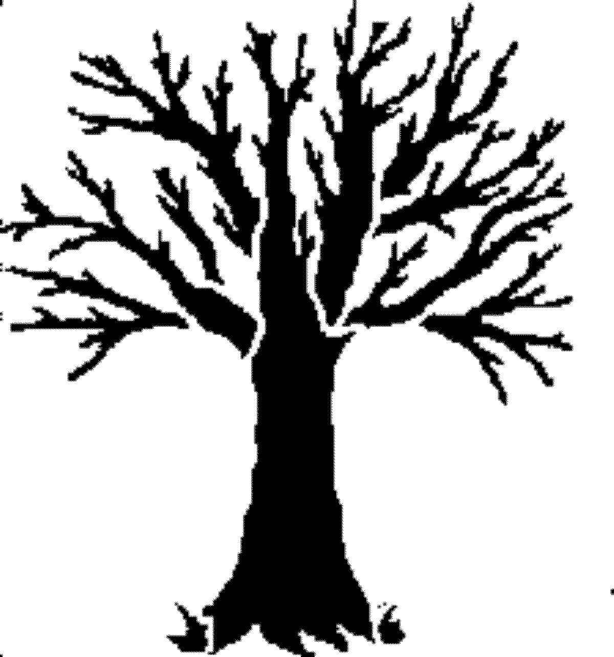 Dead Tree Outline Clipart Clipground