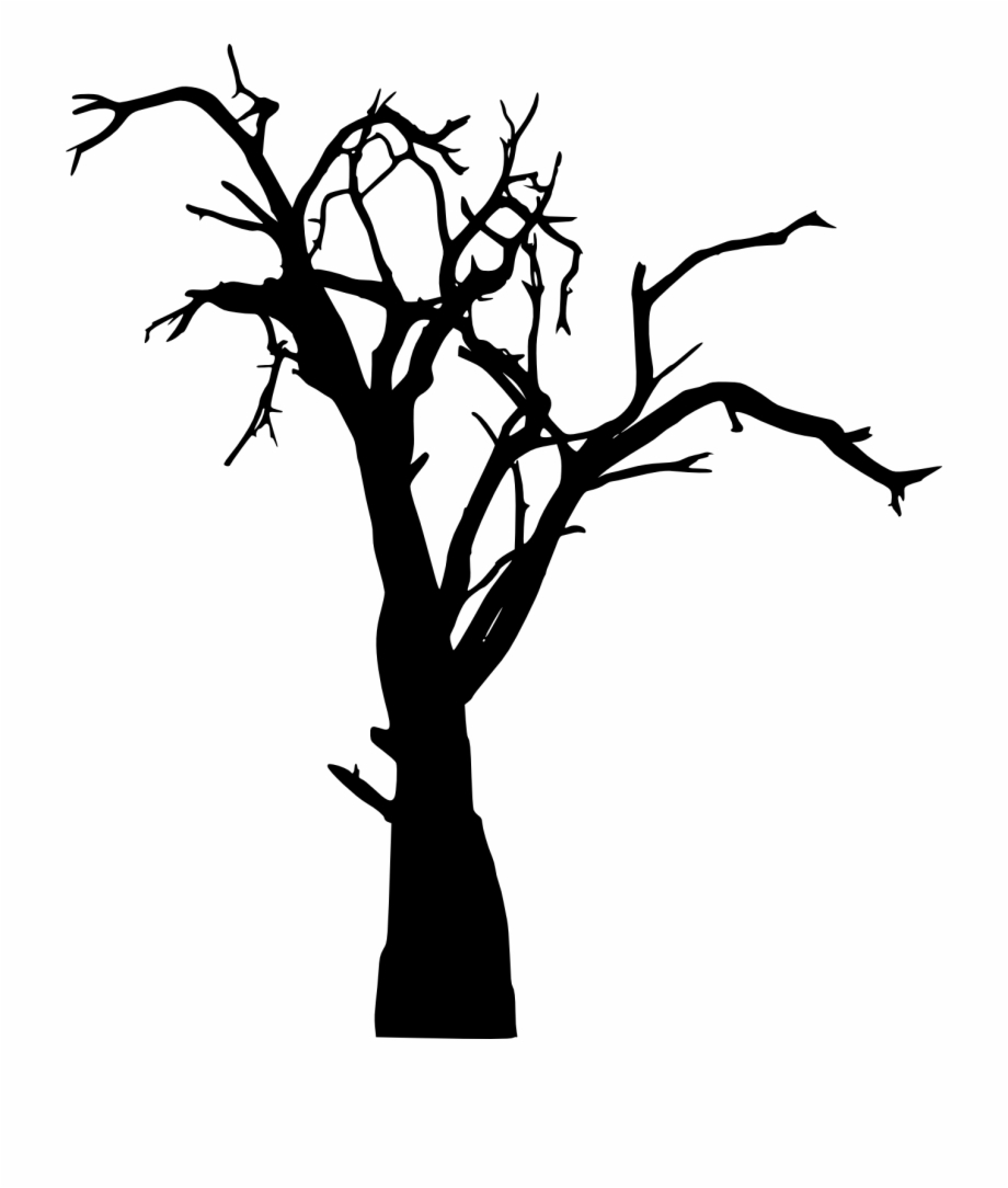 Dead Tree Silhouette Transparent Png Spooky Tree Png.