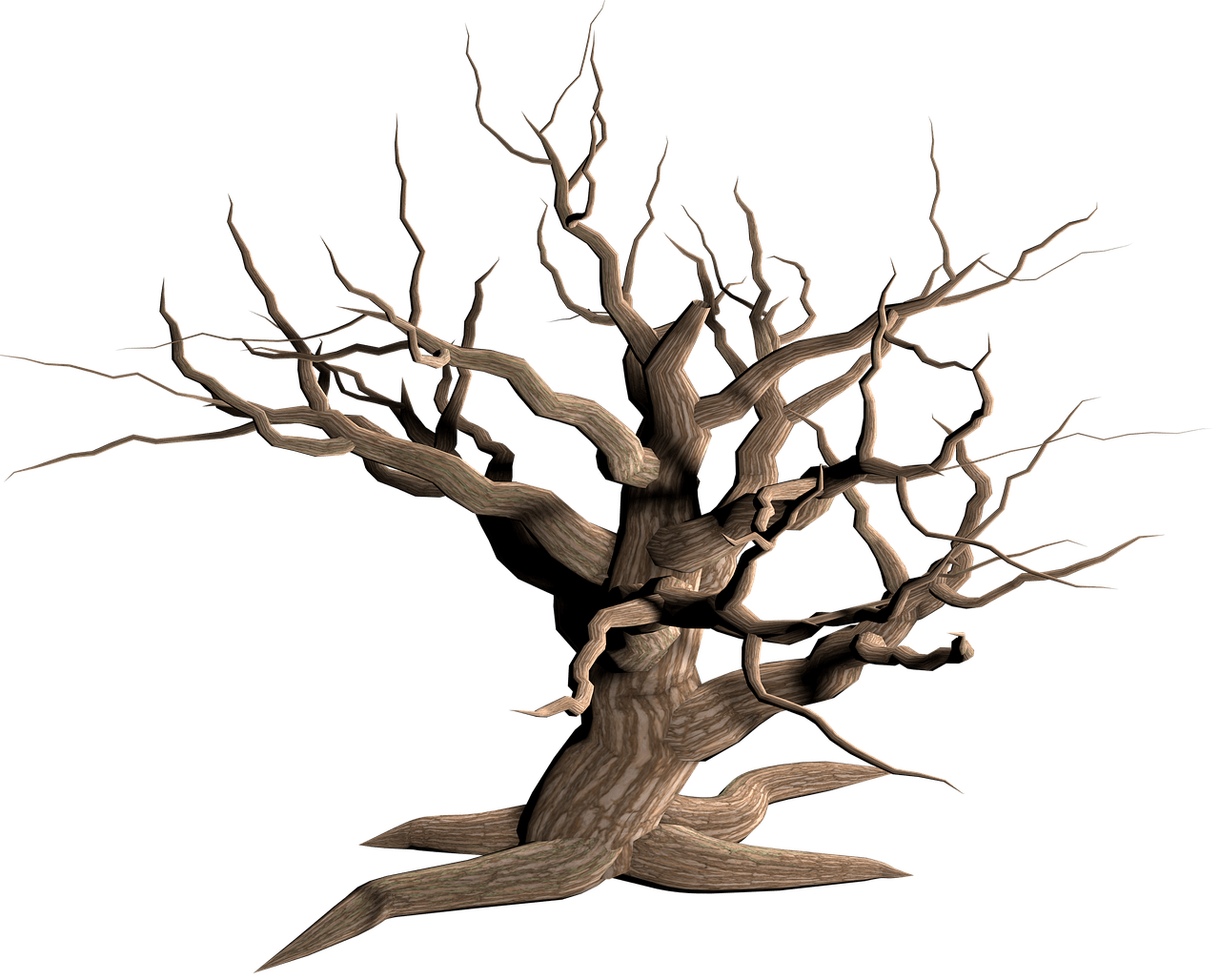 Tree Dead Branches transparent PNG.