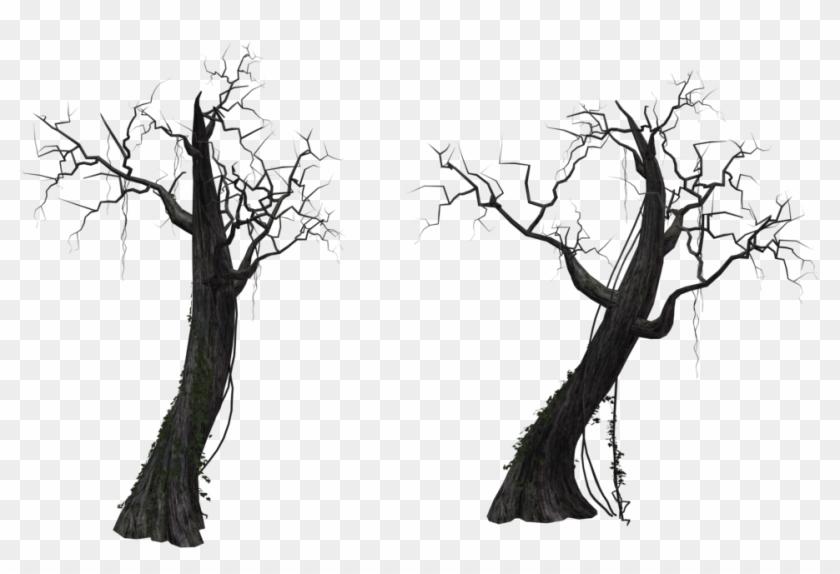 Dead Tree Png.