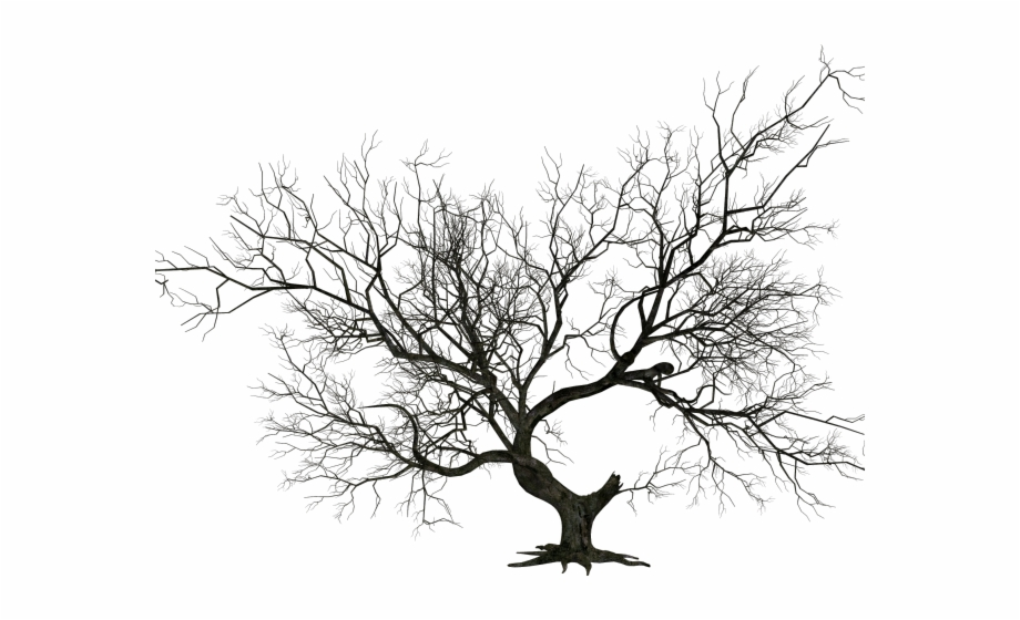 Graveyard Clipart Halloween Tree.