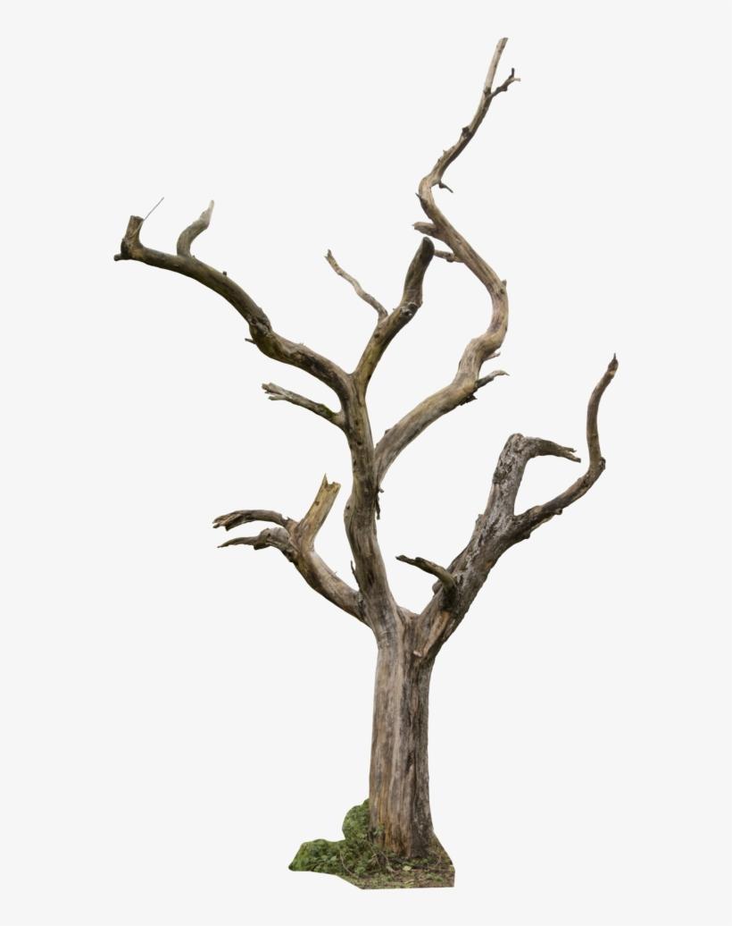 Dead Tree 04 By Gd08.