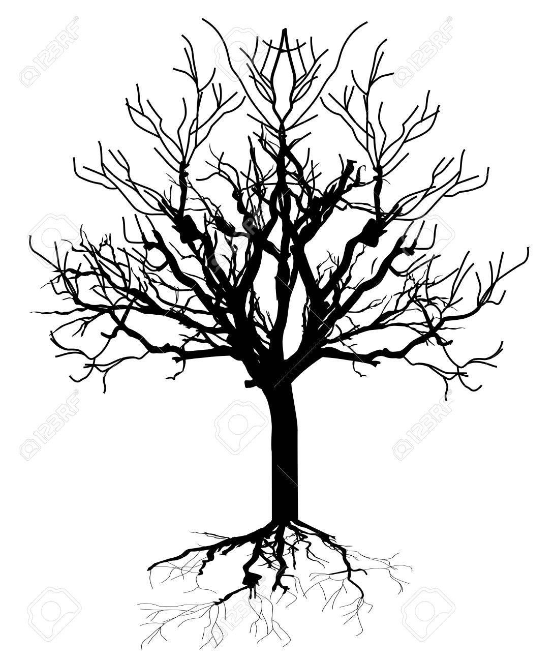 Dead Tree Silhouette.