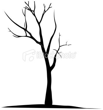 Vector dead tree silhouette.
