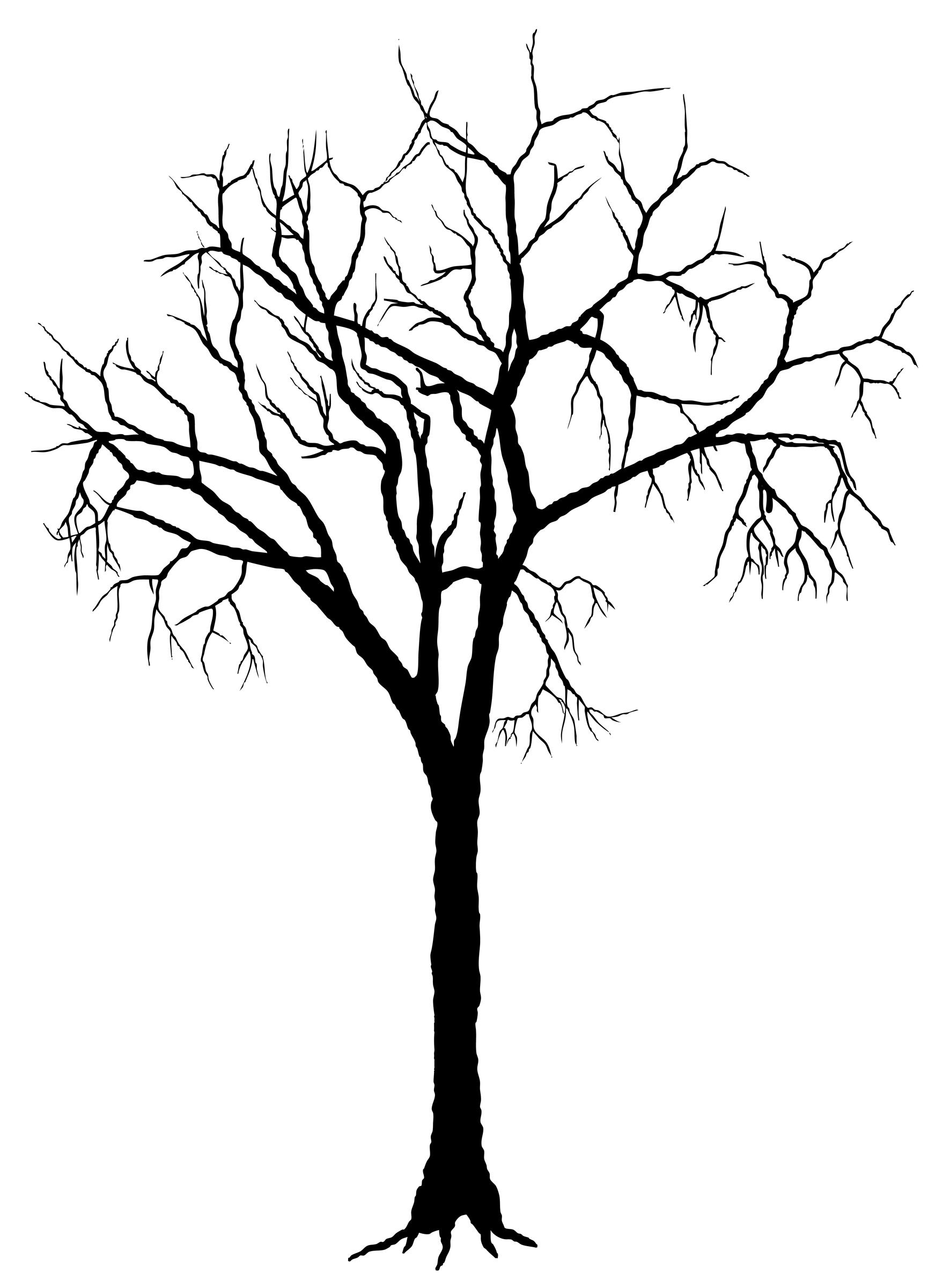 Tree Silhouette Deciduous Clip art.