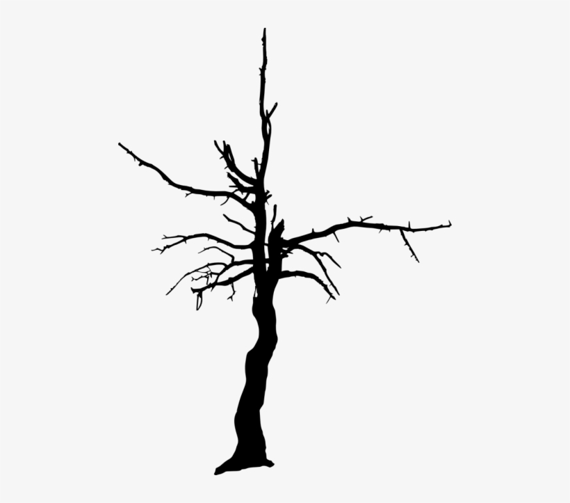 Free Png Dead Tree Silhouette Png Images Transparent.