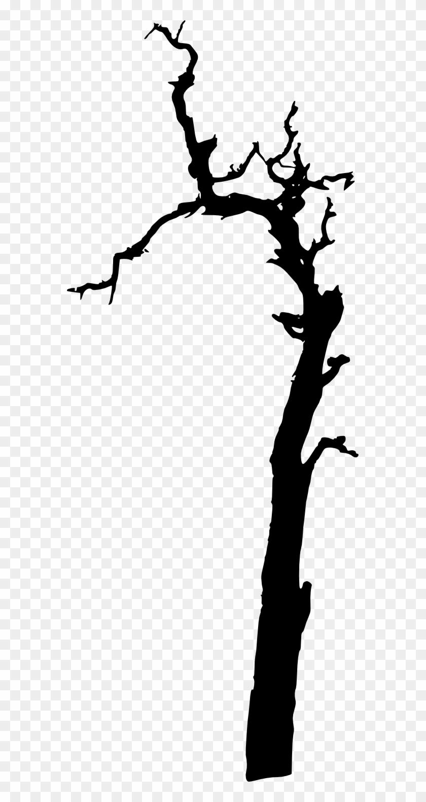 17 Dead Tree Silhouette.