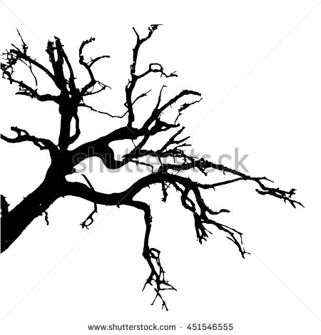 Silhouette Of A Dead Tree.