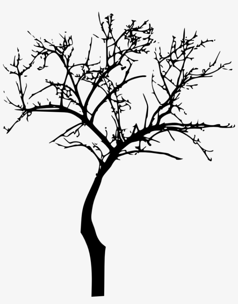 Dead Tree Silhouette Png Image Royalty Free Stock.
