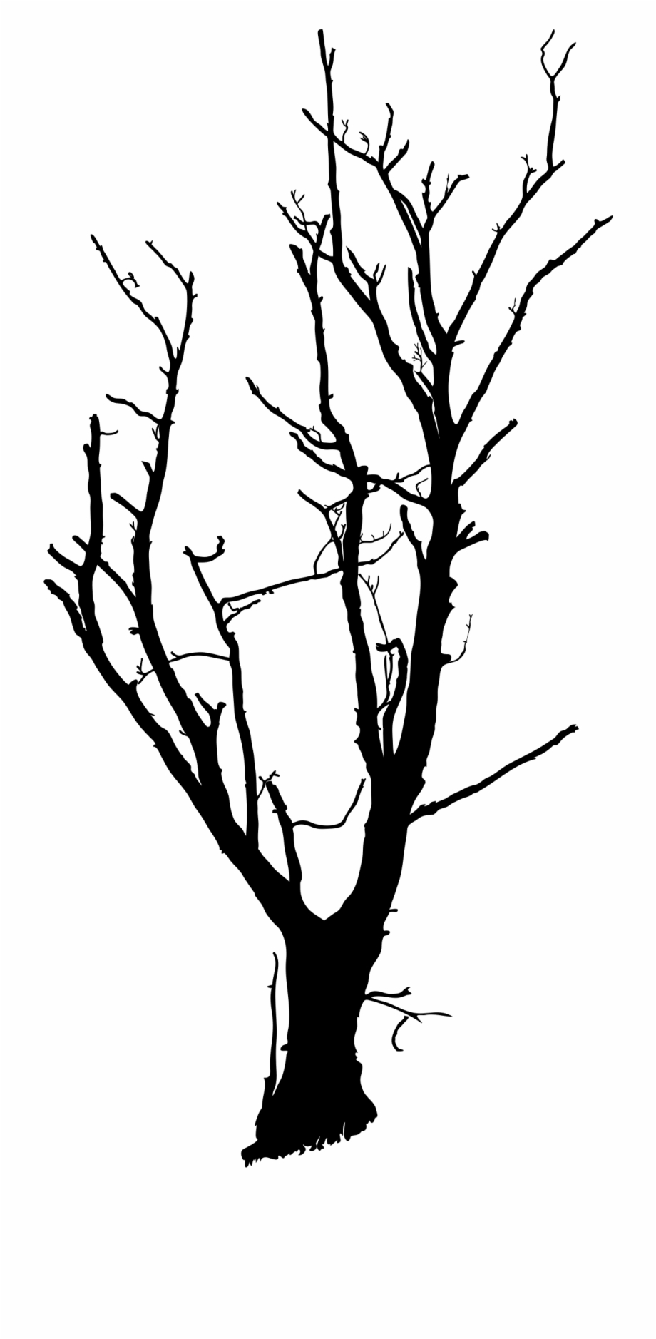 Drawing Trees Dead Tree.