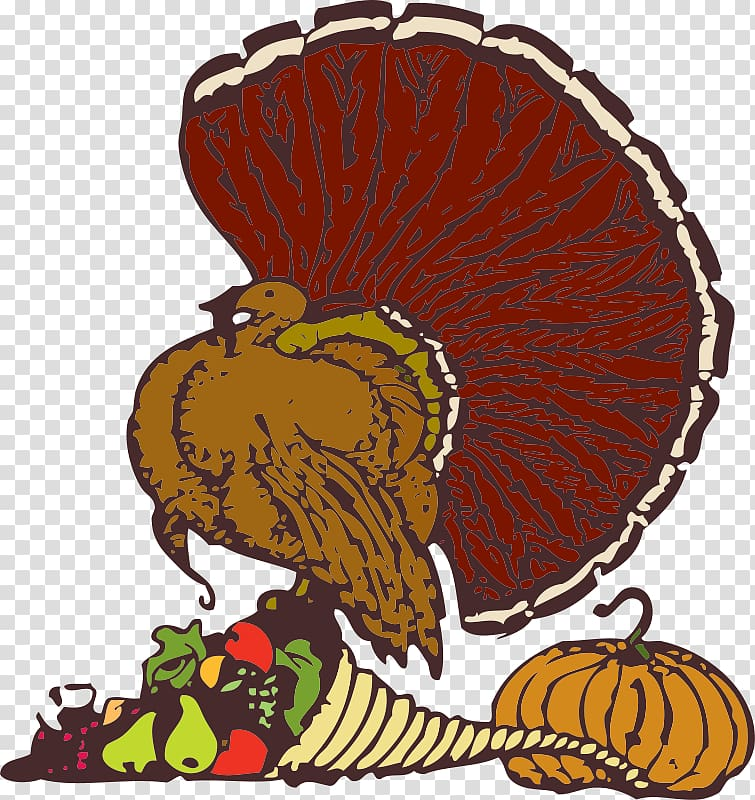 Thanksgiving Florida\'s Kitchen Turkey meat Pixabay Christmas, Dead.