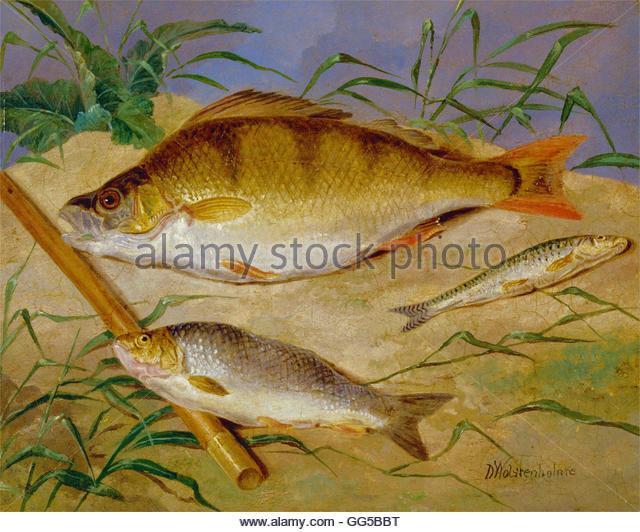 Fish Art Stock Photos & Fish Art Stock Images.