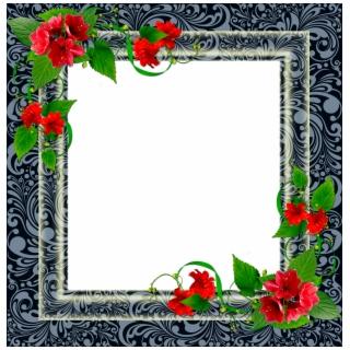 Frame Png Frame Photo Frame Floral.
