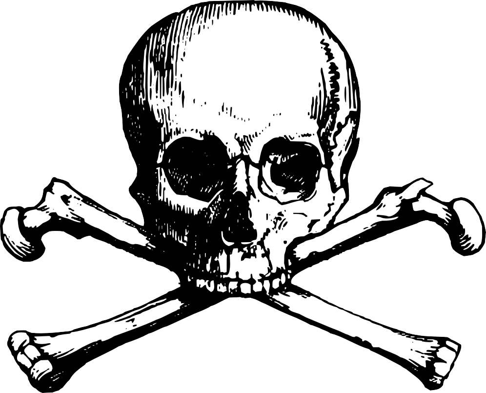 Free Death Skull Png, Download Free Clip Art, Free Clip Art on.