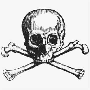Skull And Crossbones Human Skull Symbolism Death.