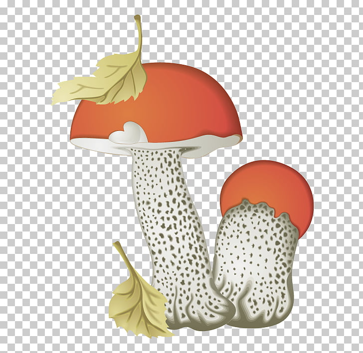 57 Death cap PNG cliparts for free download.