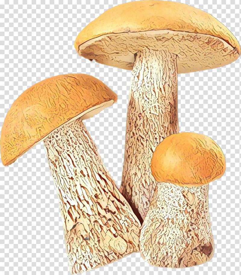 Mushroom, Edible Mushroom, Fungus, Pleurotus Eryngii, True.