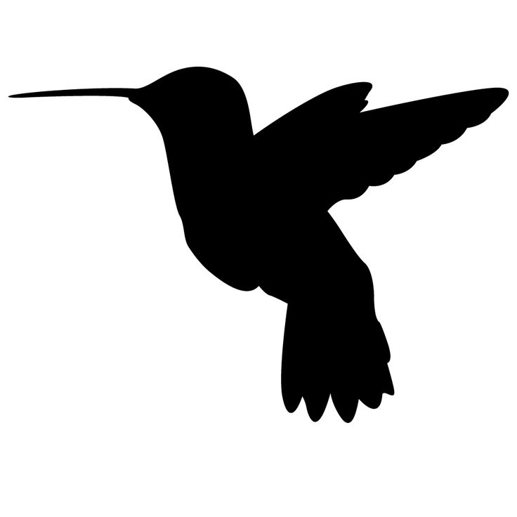 Hummingbird Silhouette Wall Decal.