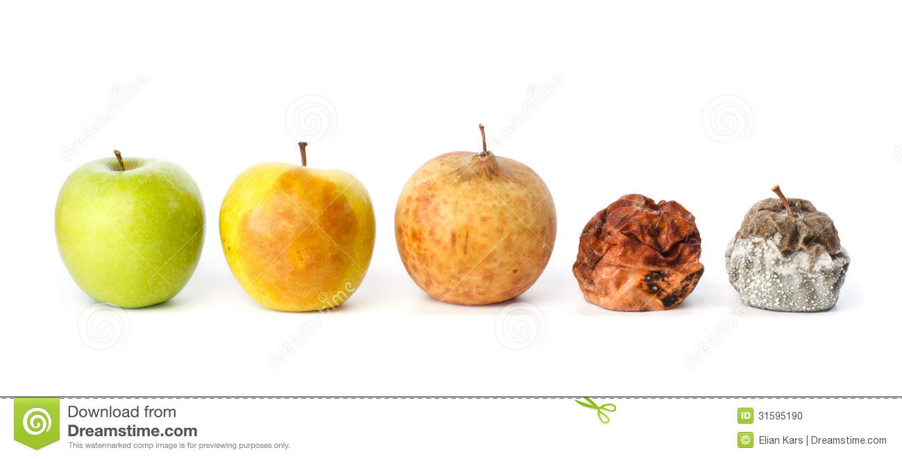 Five Apples In Various States Of Decay Stock Photo.