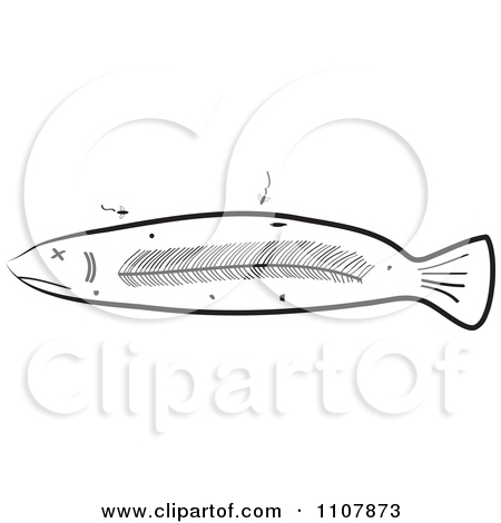 Clipart Black And White Deteriorating And And Decaying Sick Fish.