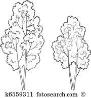 Deciduous forest Clip Art Illustrations. 2,363 deciduous forest.