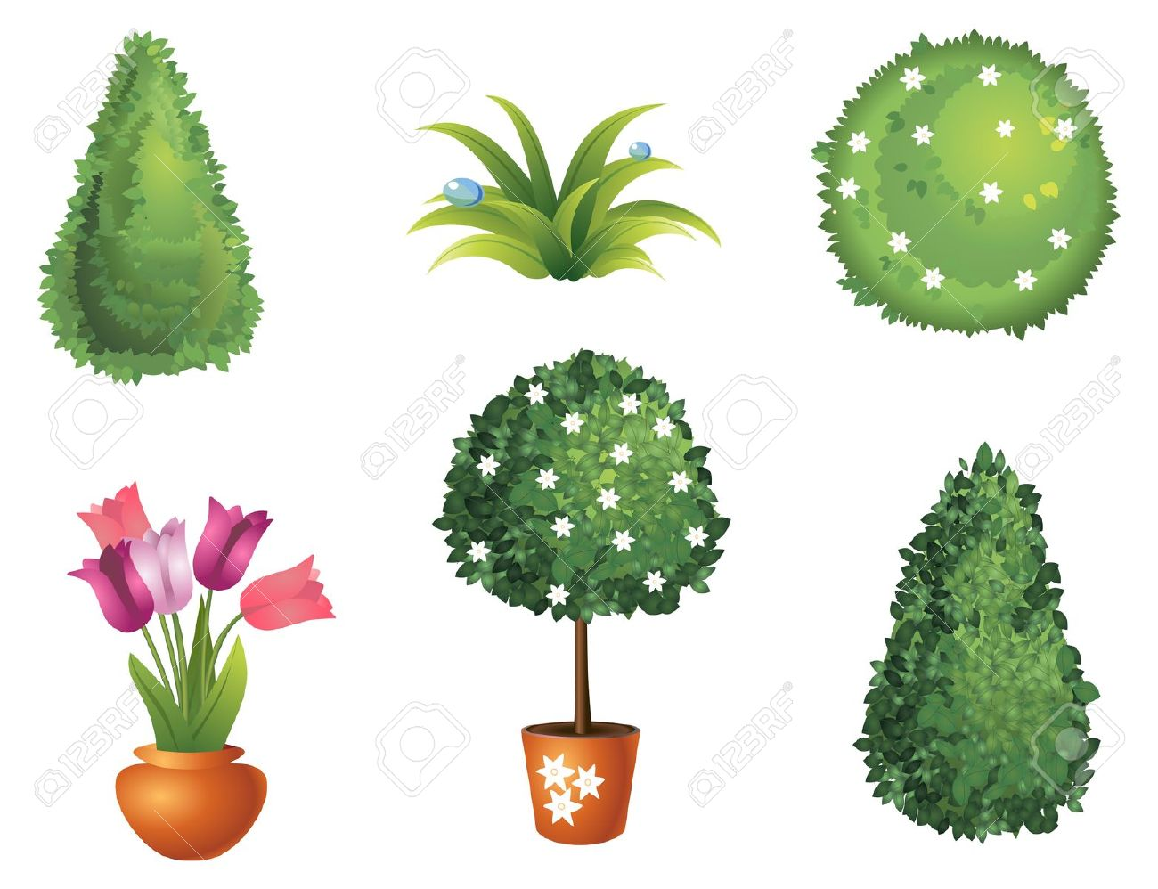 Set Of Garden Plants With Flowers And Leaves Royalty Free Cliparts.