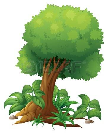 11,569 Shrub Stock Vector Illustration And Royalty Free Shrub Clipart.