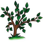Deciduous Illustrations and Clip Art. 1,152 deciduous royalty free.