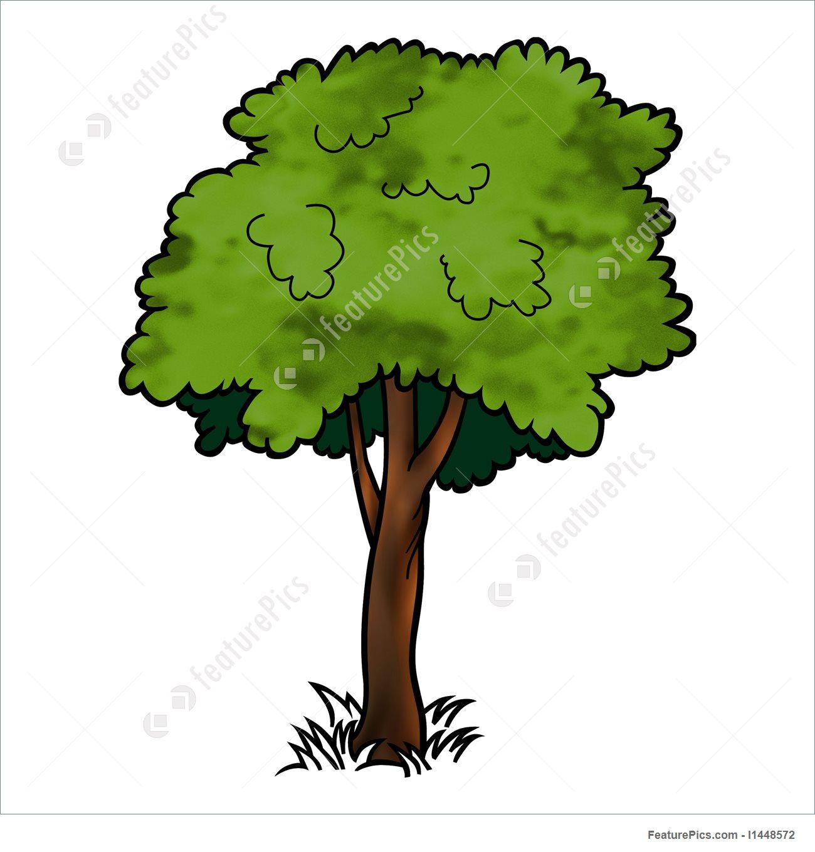 Plants: Deciduous Tree.