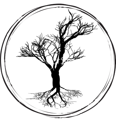 Black and white drawing of deciduous tree black vector by.