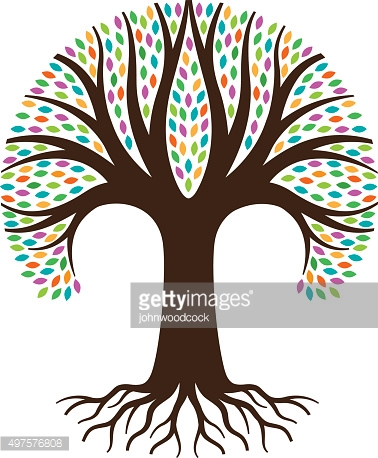 Deciduous Tree And Roots Vector Art.
