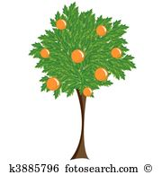 Deciduous tree Clipart and Illustration. 3,300 deciduous tree clip.