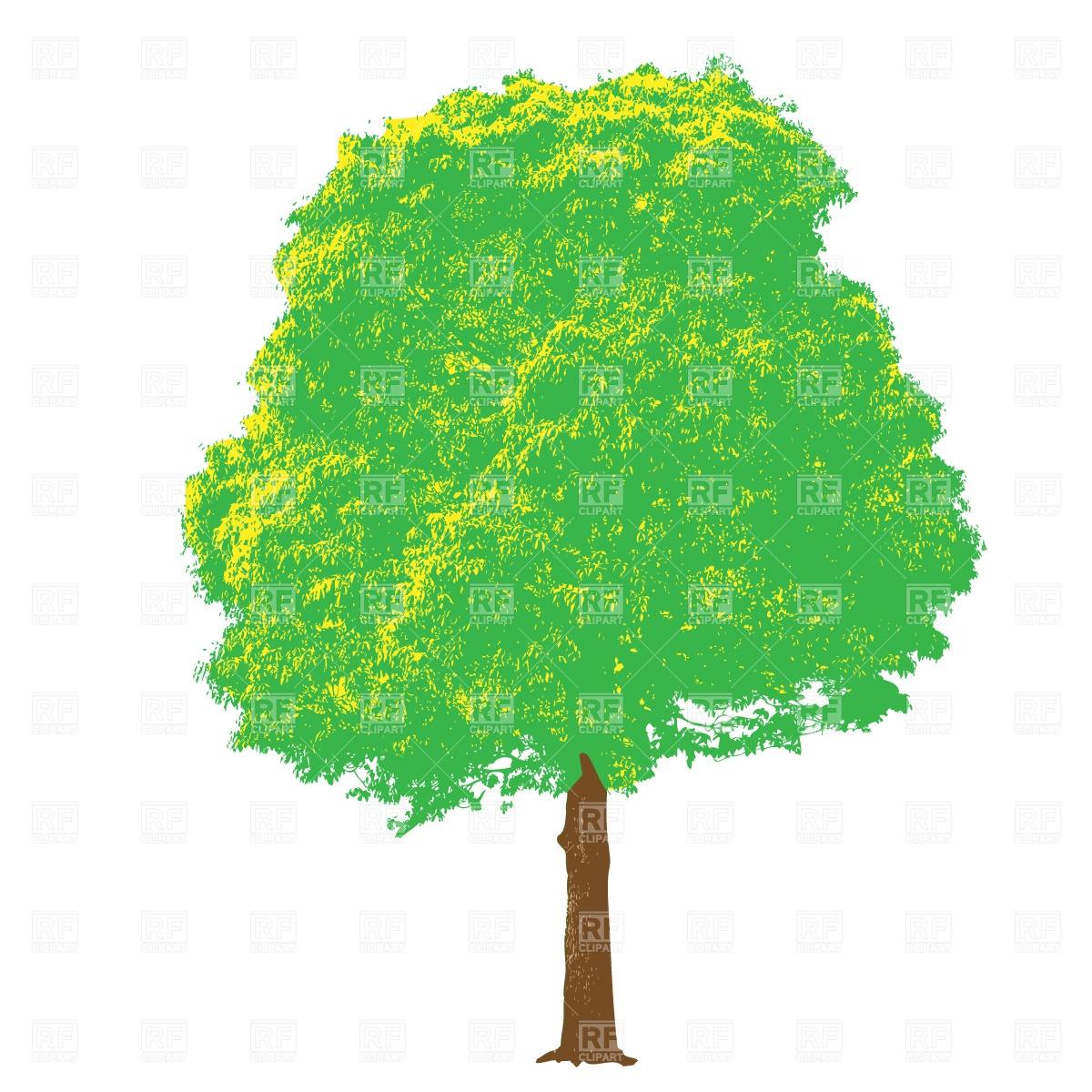 Foliage tree Vector Image #509.