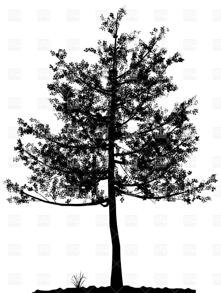 Silhouette of deciduous tree Vector Image #32880.