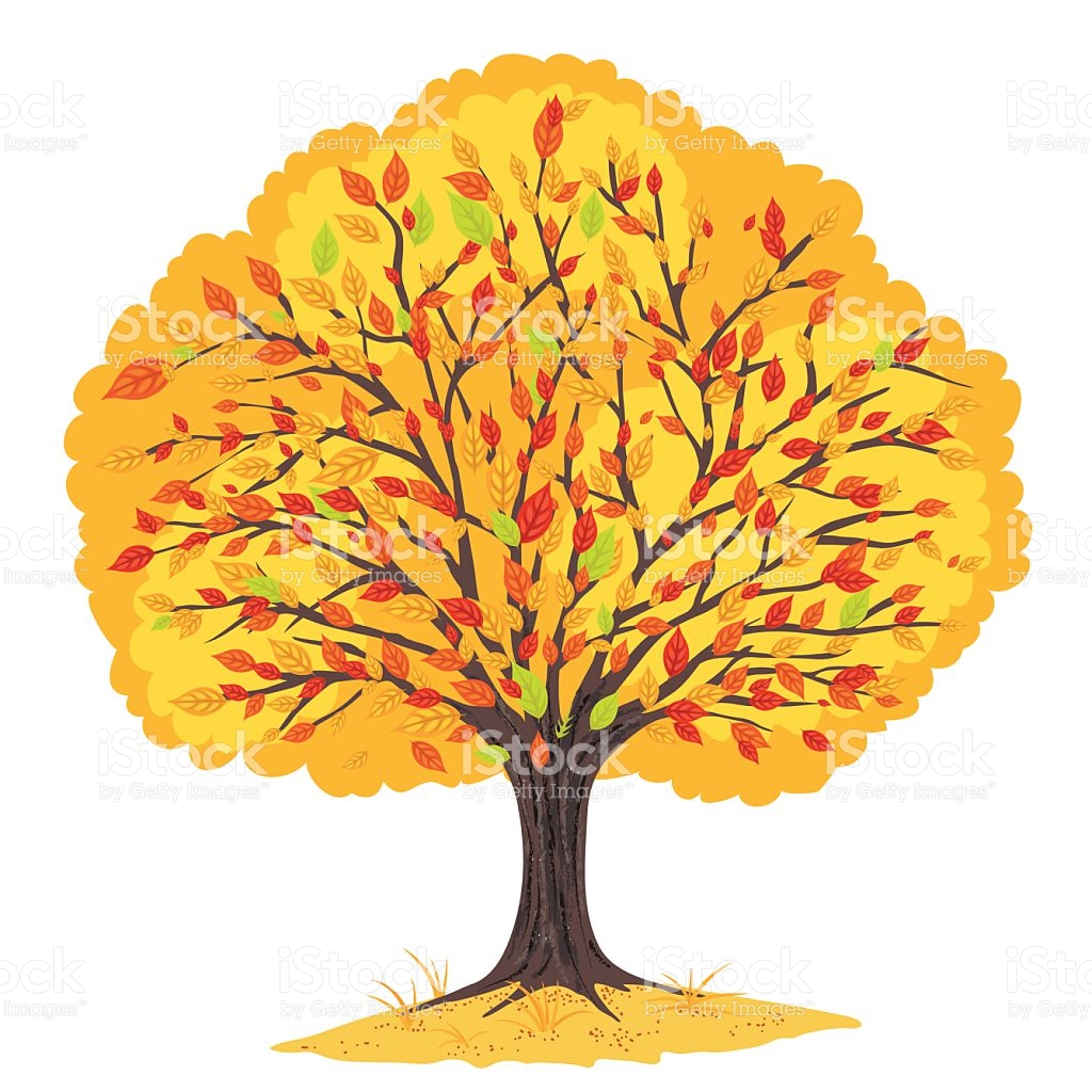 Deciduous Tree Full Of Multicoloured Leaves In Autumn And Fall.