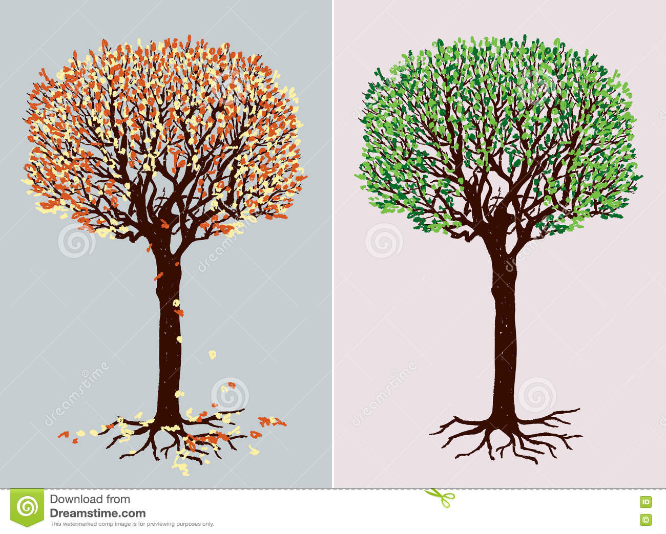 Deciduous Tree In The Different Seasons Stock Vector.