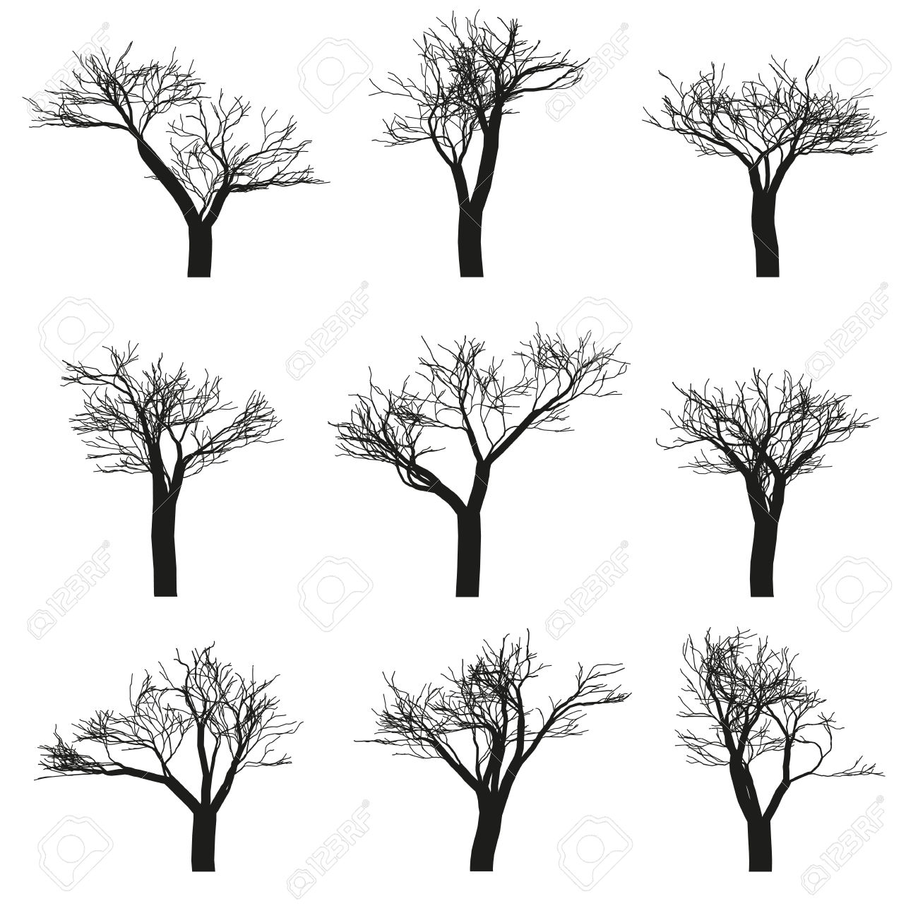 Set Of Nine Deciduous Trees With No Leaves On A White Background.