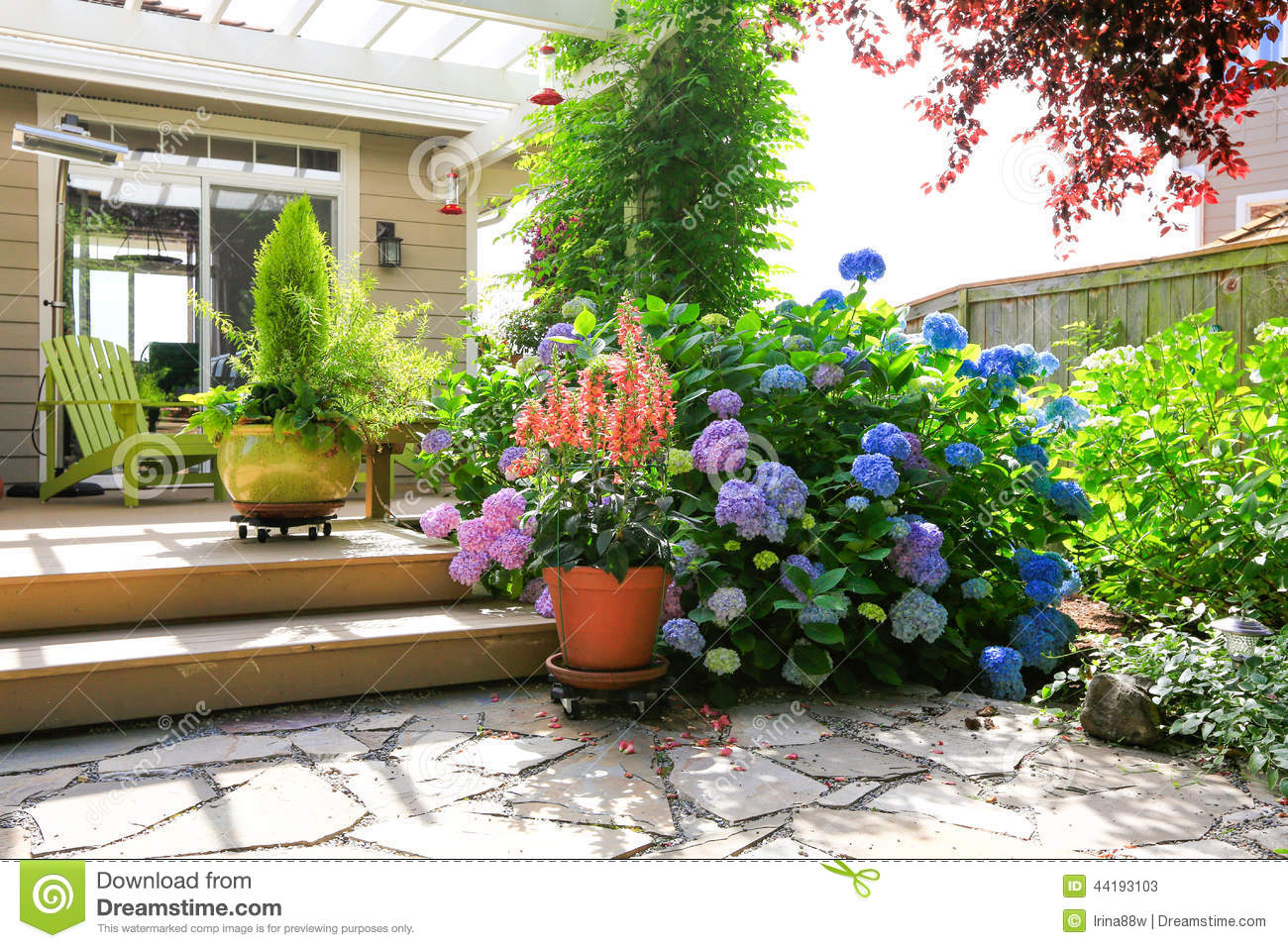 Deck With Beautiful Flowers In Pots Stock Photo.