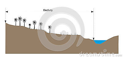 Declivity Stock Illustrations.