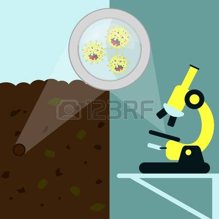 Decomposed Stock Vector Illustration And Royalty Free Decomposed.