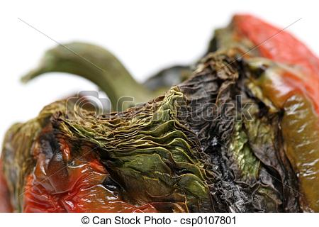 Stock Photography of decomposition.