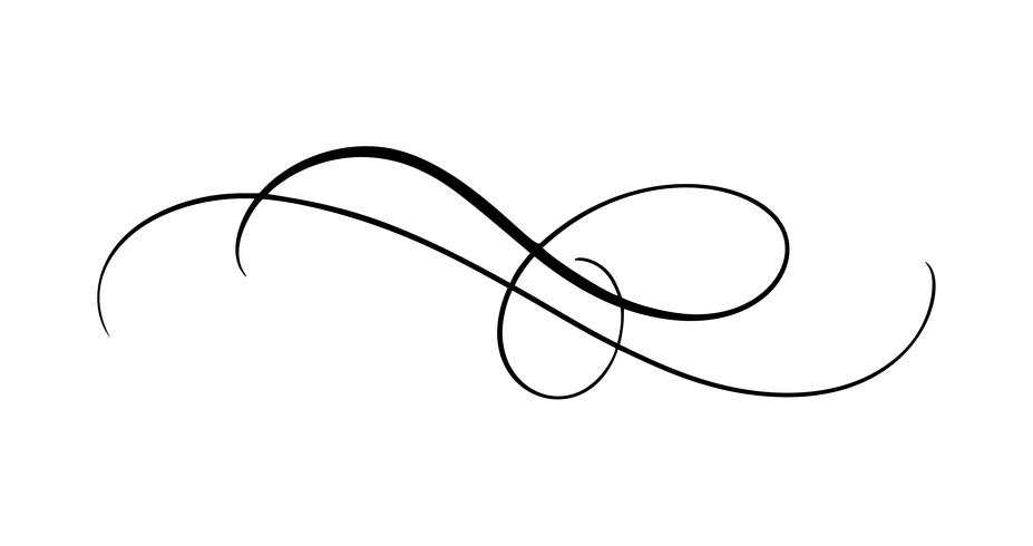 Vector calligraphy element flourish. Hand drawn divider for.
