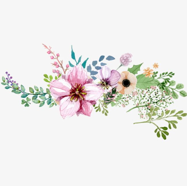 Hand Painted Watercolor Flower Decoration Pattern PNG.