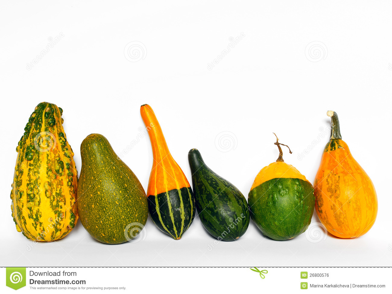 Decorative Gourds Royalty Free Stock Image.